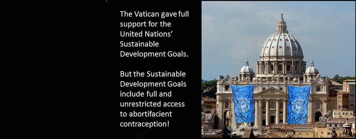 "Vatican Representative Endorses UN Sustainable Development Goals, ""Verbatim"""
